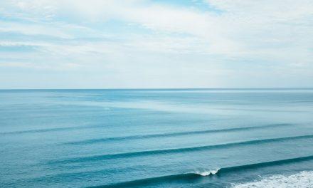 Conheça a abordagem do oceano azul e impulsione sua carreira