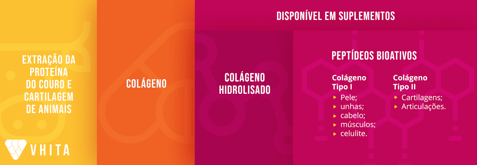 Colágeno e os tipos de suplementos de colágeno disponíveis.