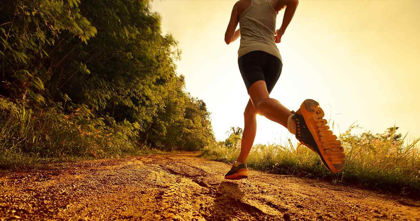 pratica de exercicios