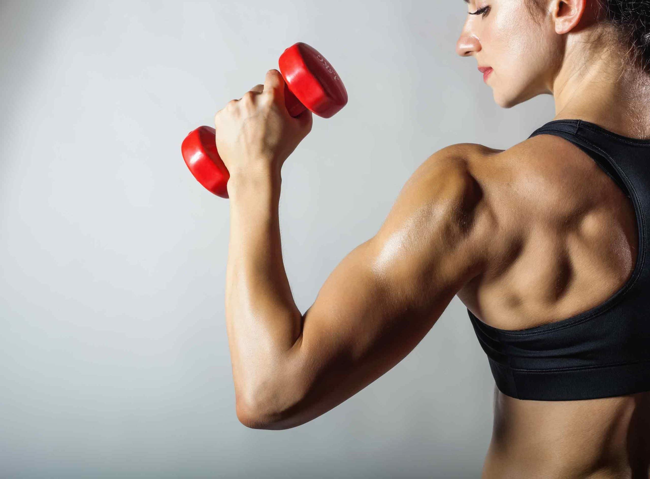Colágeno para os músculos funciona.