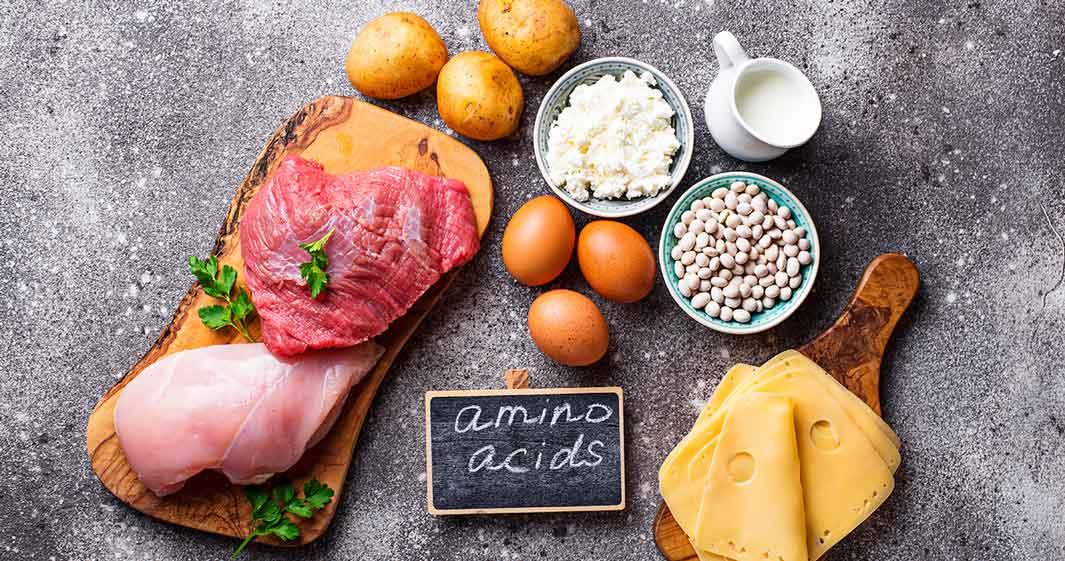 Aminoácidos essenciais.